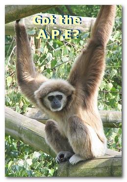 Got the A.P.E?